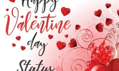 happy valentine day status